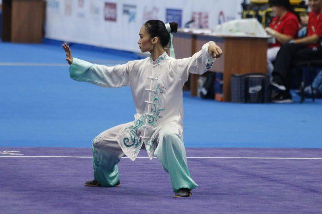 競技として既に成熟した位置づけを確立している太極拳